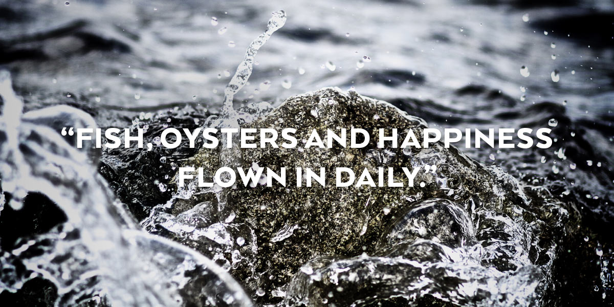 "Photograph of water splashing on rocks with the words, ""Fish, Oysters and Happiness, Flown in Daily."""