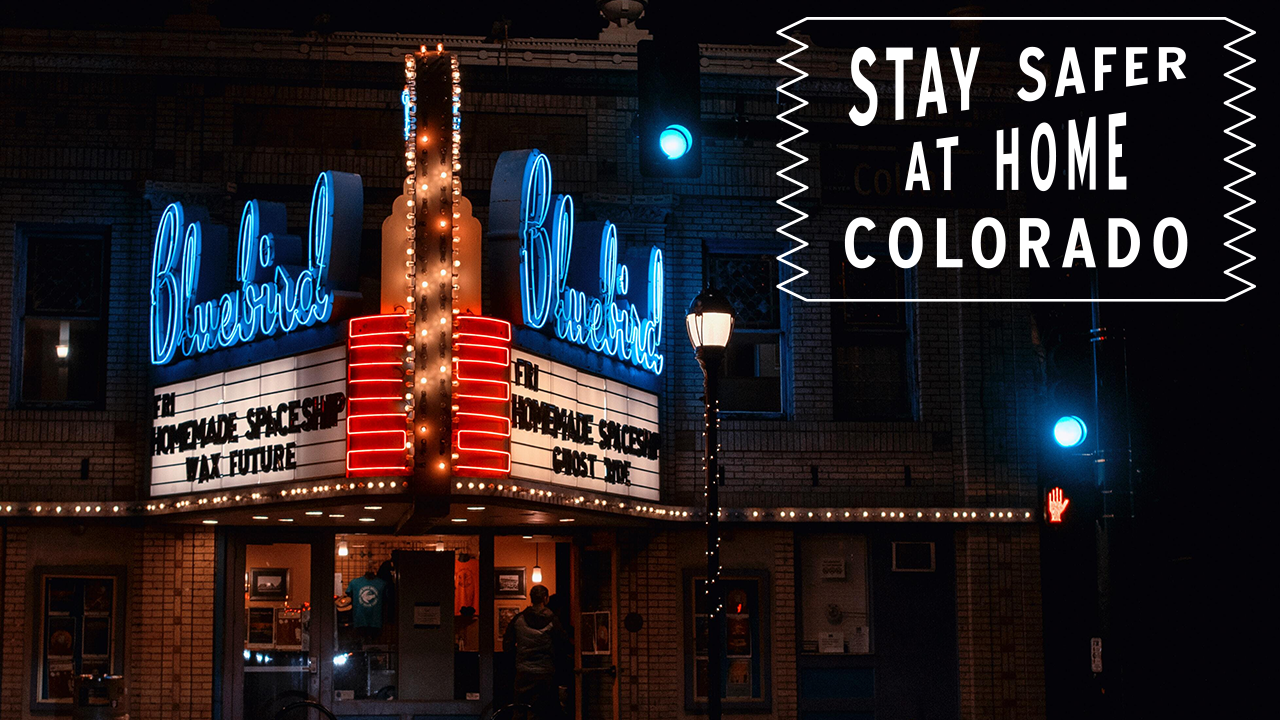 #StayHomeColorado - Bluebird
